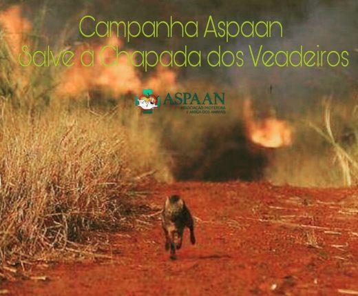 SOS CHAPADA